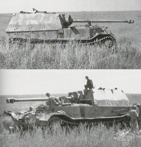 Elefant-25