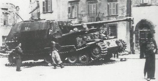 Elefant-42