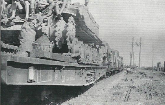 Elefant-49