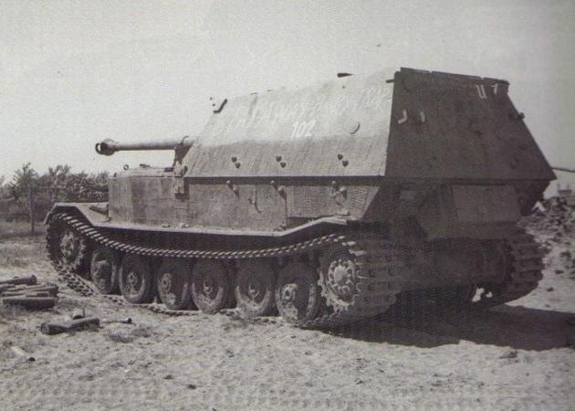 Elefant-55