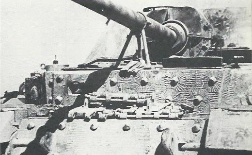 Elefant-58