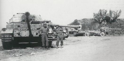 Elefant-59