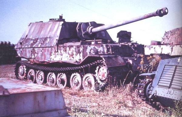 Elefant-63