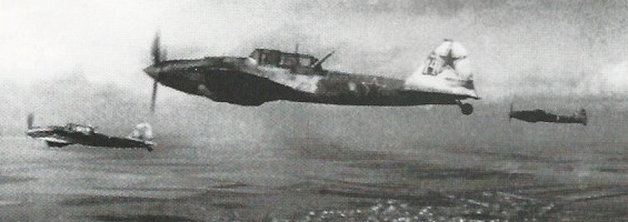PantherD-15