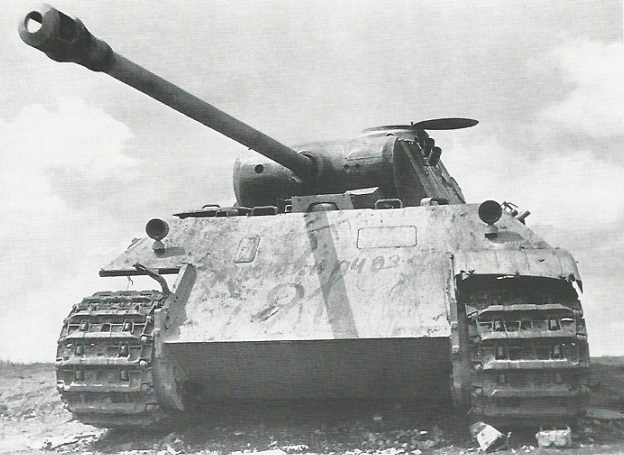 PantherD-18