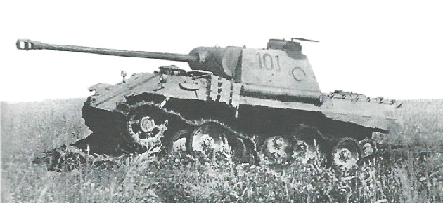 PantherD-19
