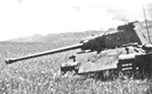 PantherD-21