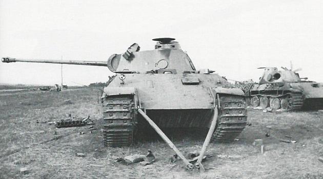 PantherD-25