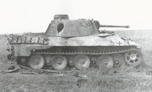 PantherD-29