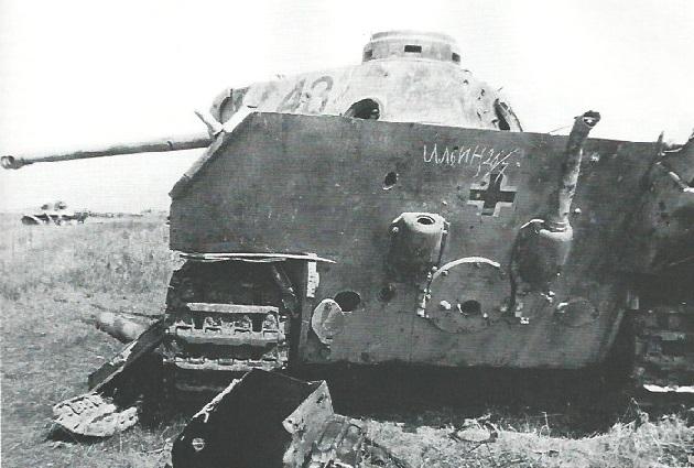 PantherD-31