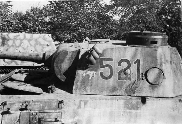PantherD-39