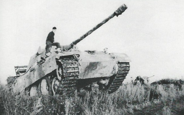 PantherD-44