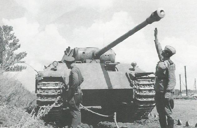 PantherD-48