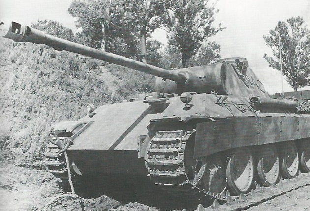 PantherD-49