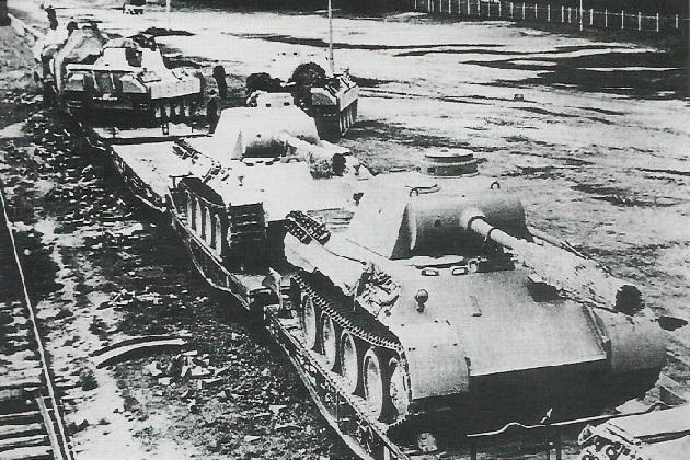 PantherD-5