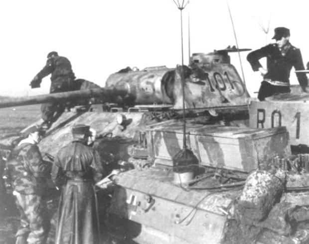 PantherD-56