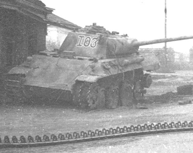 PantherD-57