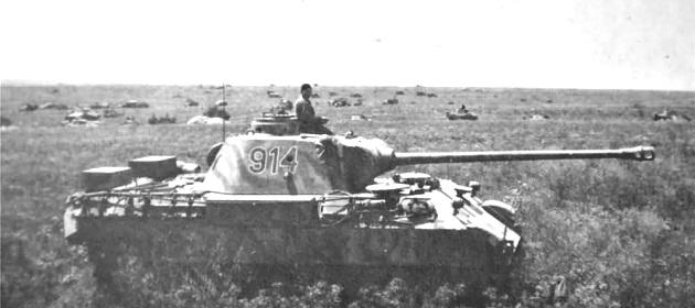 PantherD-59