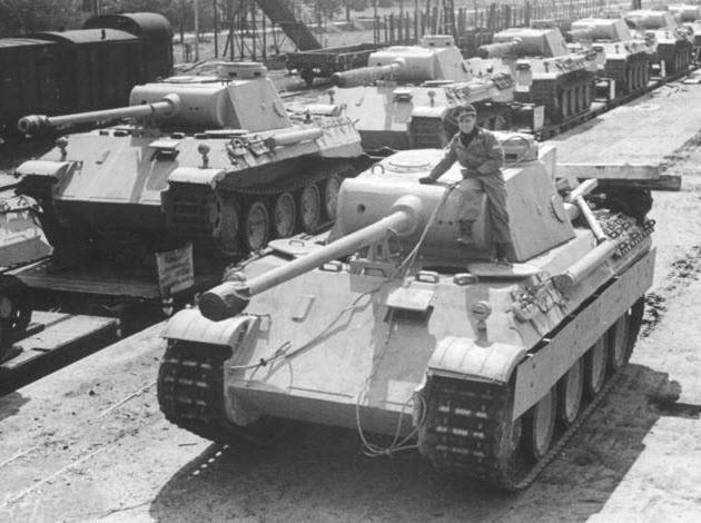 PantherD-6
