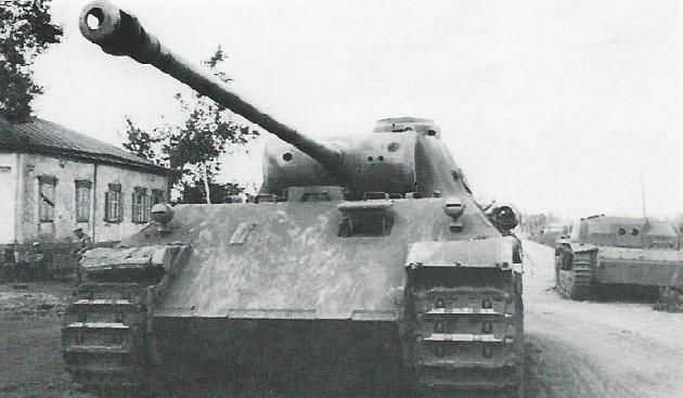 PantherD-60