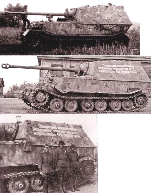 FerdinandElefant-24