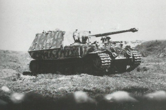 FerdinandElefant-27