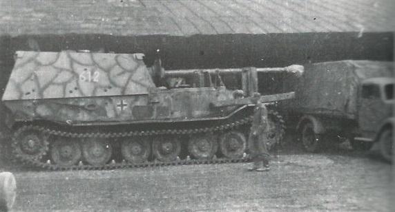 FerdinandElefant-41