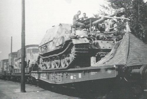 FerdinandElefant-44