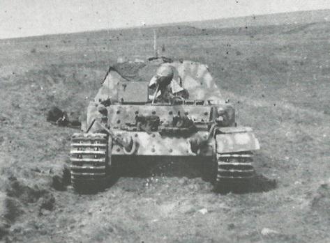 FerdinandElefant-52