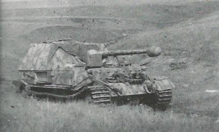FerdinandElefant-53