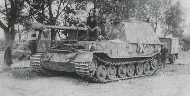 FerdinandElefant-54