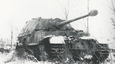 FerdinandElefant-76